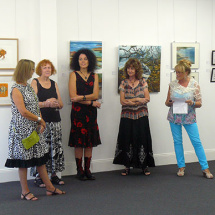 Gallery owner Jo Chisholm Ray opening exhibition
