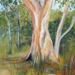 Tree-Study-1-oil-on-paper-30x21-large