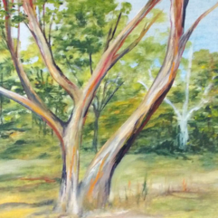 Tree-Study-2-oil-on-paper-21x30-large